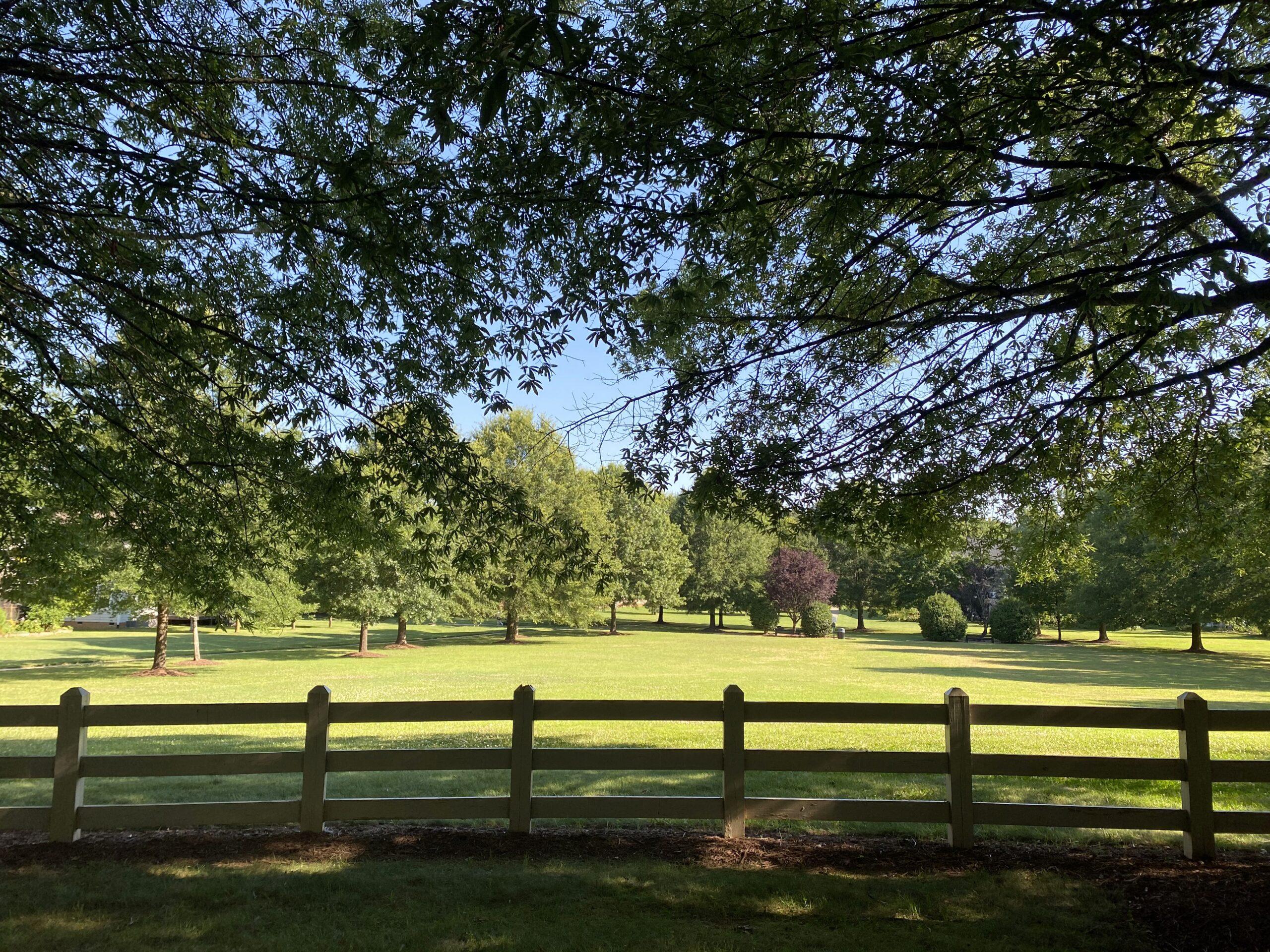 Natural grass field near N. Fields Circle in Lake Hogan Farms.