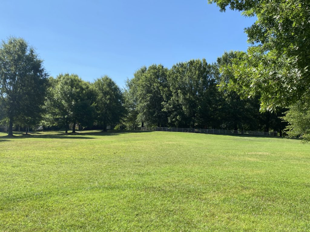 Wide open, natural grass field for playing and enjoying a common space in N. Fields Circle in Lake Hogan Farms within the town of Carrboro, North Carolina. (July 2020)
